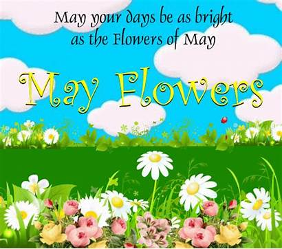 Flowers Bright Month Flower Card Greetings Events