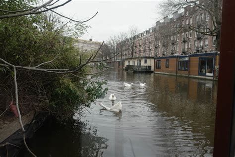 Woonboot Plek Amsterdam by Een Woonboot In Amsterdam Huren Met Kinderen Doen