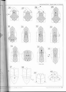 Diagram Hammerhead Shark Nguyen Ngoc Vu Super