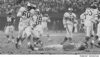 Image result for chuck bednarik