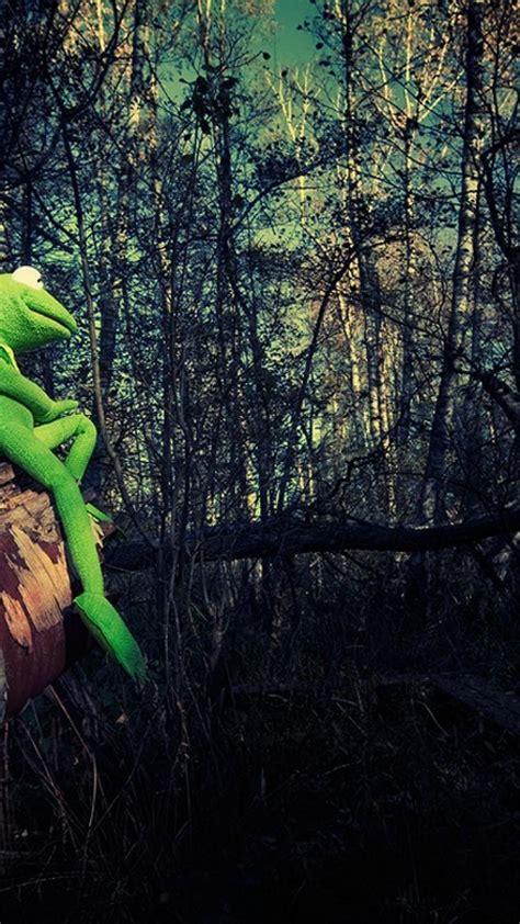 Dark Kermit The Frog Wallpapers On Wallpaperdog