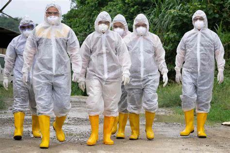 Fugleinfluensa (aviær influensa) forårsakes av influensavirus a og er en smittsom virussykdom hos fugler, men kan også smitte til andre dyrearter. fugleinfluensa - Store medisinske leksikon