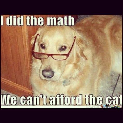 37 Best Images About Dog Jokes On Pinterest Animal