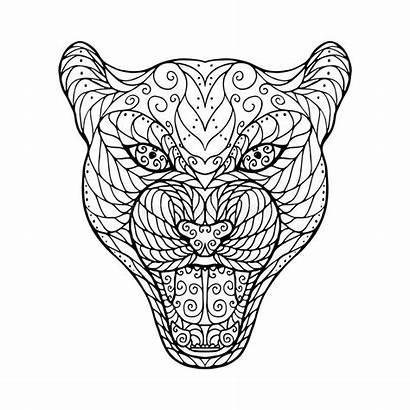Jaguar Head Zen Coloring Drawing Tangle Animal