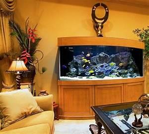 Aquarium Dekorieren Ideen : fisch aquarium selber einrichten und dekorieren dekoration decoration ideas deko ideen ~ Bigdaddyawards.com Haus und Dekorationen