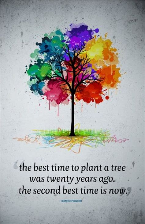 quot the best time to plant a tree was twenty years ago the
