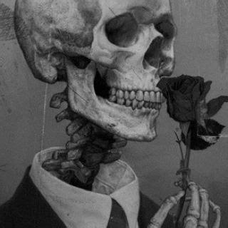 skeleton art skull art skull skeleton art