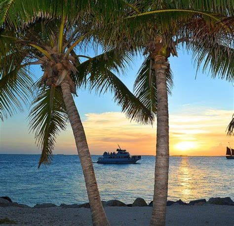 Glass Bottom Boat Key West by Key West Tour And Glass Bottom Boat Package