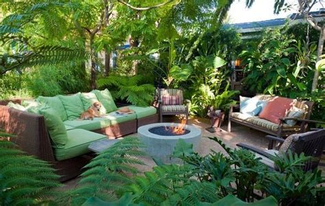 tropical backyard landscaping ideas tropical landscaping los angeles ca photo gallery landscaping network