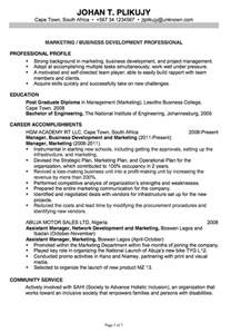 resume format marketing professional chronological resume exle marketing business development