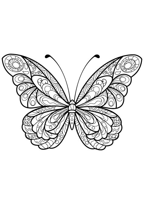 butterfly beautiful patterns  butterflies insects adult coloring pages