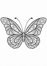 Butterfly Coloring Pages Butterflies Adults Patterns Adult Printable Insects Mandala Insect Simple Children Sheets Justcolor Animals Geeksvgs Easy Background Coloriage sketch template