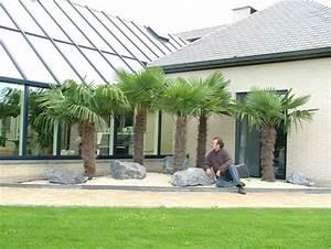 Palmen Kaufen Baumarkt : wintergarten wintergartenbepflanzung wintergarten pflanzen kaufen wintergartenfirmen ~ Orissabook.com Haus und Dekorationen