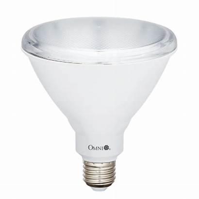 Par 38 Led Lamp Omni Lighting Par38
