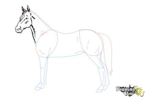 draw  easy horse drawingnow