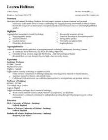 how to build a resume in microsoft word 2007 professor cv template professor cv exles livecareer