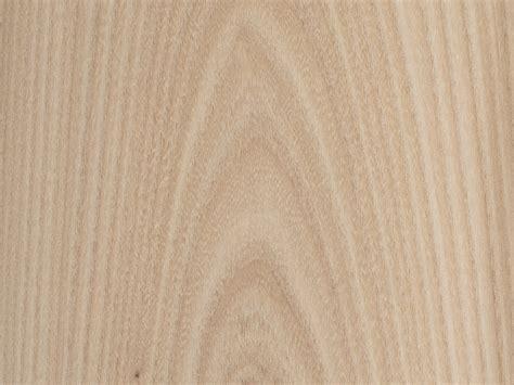 feuille placage bois brut bilegno orme d 39 amérique ramageux n127 250x125 11 10mm
