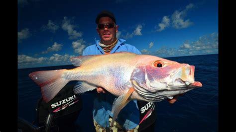 awesome big fish kaos fishing great barrier reef