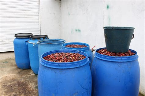 A juicy and wild anaerobic processed coffee from mauricio vindas, with floral aromas and juicy cherry flavours. Anaerobic Fermentation - Craft House Coffee