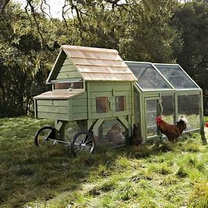 Alexandria Chicken Coop and Run - The Green Head
