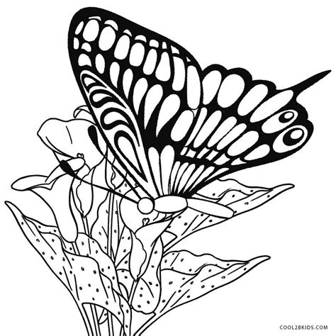 printable coloring pages printable butterfly coloring pages for cool2bkids