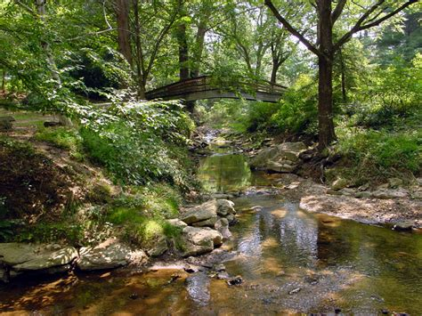 asheville botanical gardens 16 kid friendly places in asheville nc