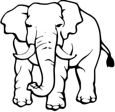 elephant clipart black and white elephant clipart black and white clipart panda free