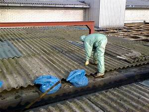 Was Kostet Asbestentsorgung : dachpappe entsorgen preise wo kann man dachpappe entsorgen infos zu kosten preise dachpappe ~ Frokenaadalensverden.com Haus und Dekorationen