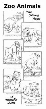 Coloring Enfant Savana Emergent Raisingourkids Childcare Sheapeterson Zoologico Unfinishedman Renkliyasam Tierre Skole sketch template