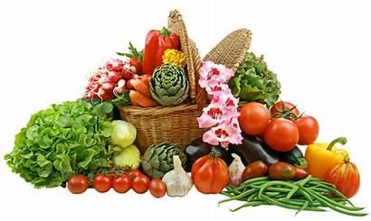 Basket Vegetable Clipart Vegetables Transparent Yopriceville Previous