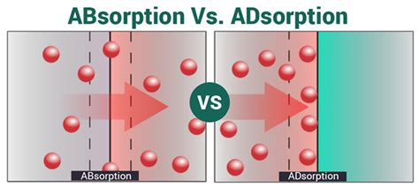 Adsorption And Absorption Adsorbtion Definition & Examples. Sackman Animal Hospital Funny Business Videos. Emergency Response Systems For Seniors. Gentle Dental Greenville Tx Suvs For Lease. Purchase Email List For Marketing. Project Management Firms Edgecombe Avenue Nyc. New York City Web Hosting Tank Water Delivery. Medical Treatment Of Depression. Virginia Small Business Certification