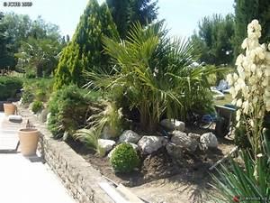 Massif Autour Piscine : creation nouvelle rocaille printemps 2009 cot piscine les galeries photo de plantes de ~ Farleysfitness.com Idées de Décoration