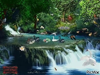 Nature Wonderful Picmix Normal