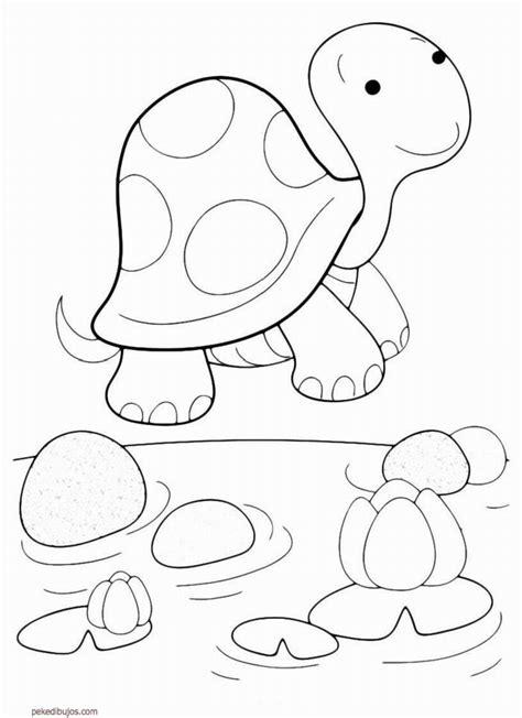 dibujos de tortugas  colorear