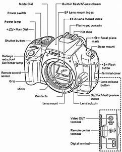 Bmw N62 Engine Diagram Within Bmw Wiring And Engine