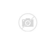 Процедура жилищной регистрации образец