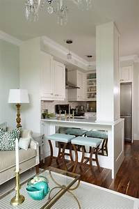 beautiful open kitchen that blends seamlessly into a chic