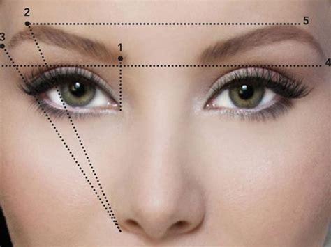 brows    nose  slimmer