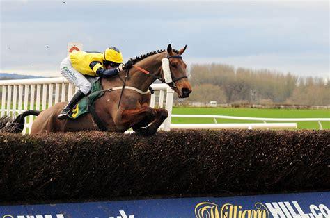 hunt national racehorse horse types paul race racing racehorses