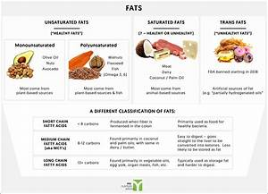 Ketogenic Diet Overview