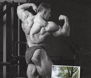 Have You Seen Dorian Yates Lately