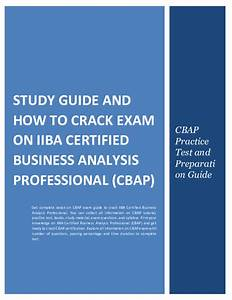 Cbap Certification And Babok Study Guide Pdf
