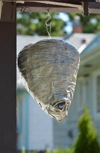 Fake Wasp Nest