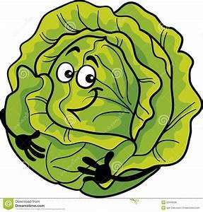 Cute Cabbage Vegetable Cartoon Illustration Stock Vector ...