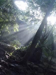 Reviews, tips &... Mooiste Cenotes Cancun