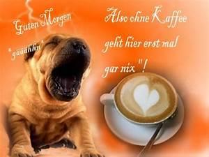 Lustige Guten Morgen Kaffee Bilder : guten morgen 2018 spr che gr e lustig bilder mein schatz ~ Frokenaadalensverden.com Haus und Dekorationen