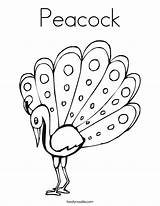 Coloring Peacock Outline Pages Drawing Template Glass Painting Peacocks Printable Feather Getdrawings Noodle Tracing Twistynoodle Built California Usa Getcoloringpages Animal sketch template