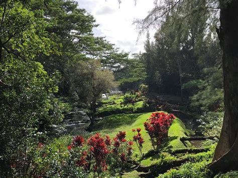 Mystischer Garten  Picture Of Touch Kauai, Kapaa