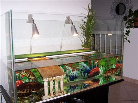 meuble aquarium tortue
