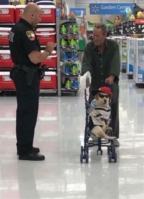 baby strler lustig security investigates pushing baby in stroller at walmart of walmart